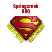 AmeriPlan USA Super Saturday Career Fair Seminar @ Spring Creek BBQ